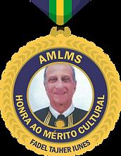 medalhas honra.png