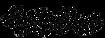 SS_Logo_NEW_PLAIN_V2_edited.png