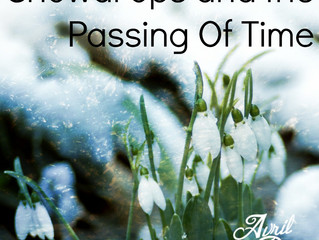 Snowdrops and the passing of time.