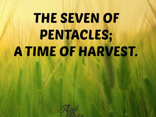 The Seven of Pentacles; A Time of Harvest