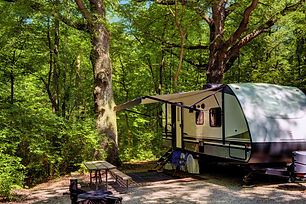 Travel trailer camping in the woods at s