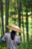 Guilin-M1381-EditXX 2.jpg