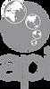 api-logo-grey.png