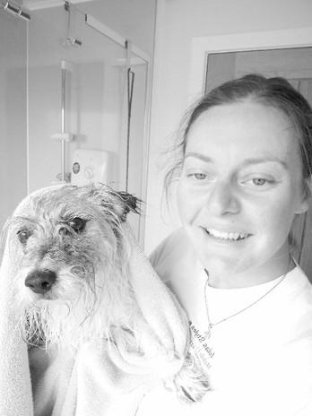 Dog washed