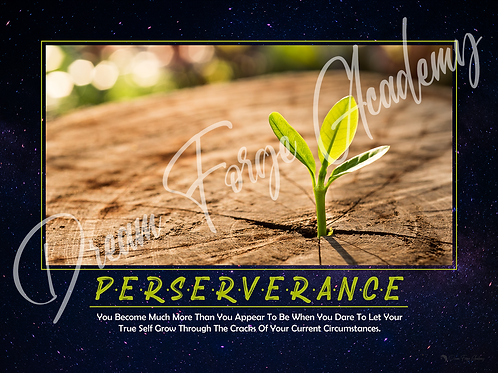 Perseverance Motivational Poster (Galaxy)