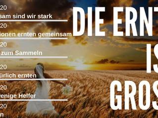 Predigtreihe: Die Ernte ist groß