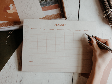 Plan with us (+ tips!)