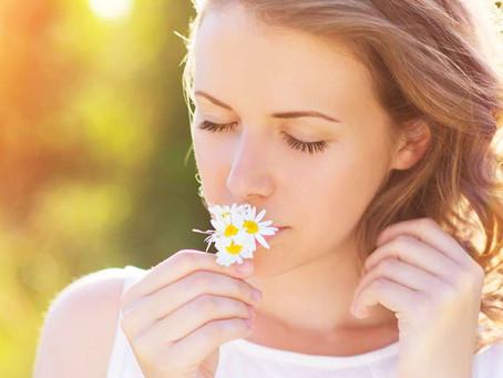 Winter - Spring Skincare