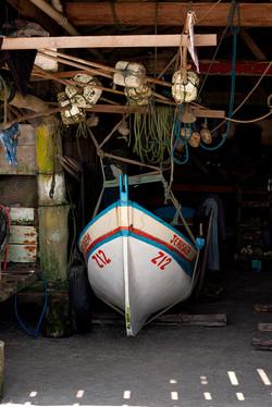 Pesca 06