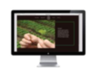 desktop wbe3.jpg