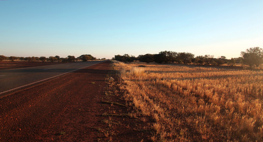 Bush - Western Australien