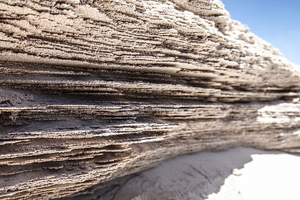 Lancelin sands dunes