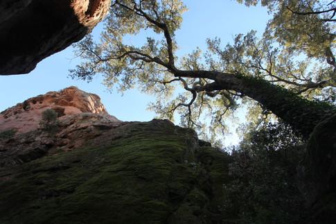 saint trou Roquebrune Rocher de Roquebrune