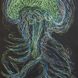 Longevity of a JellyFish