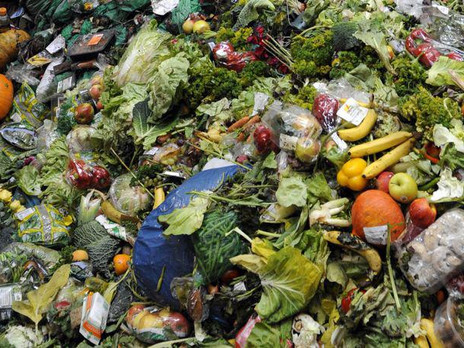 Comment diminuer le gaspillage alimentaire?