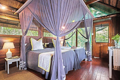 Kosi Forest Lodge Twin Room.jpg