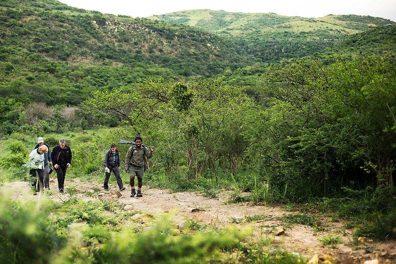 Flitestar Kosi Forest Lodge Walking Safa