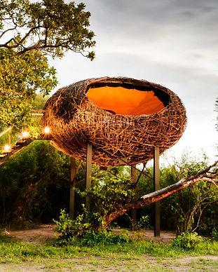 Chisa Busanga Nest Camp Zambia.jpg