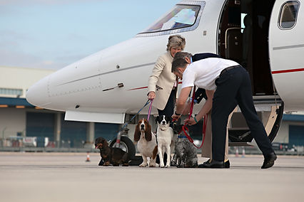 Private Jet Charter Manchester, Private Jet Services UK, Air Charter UK, Private Jet Charter Cyprus, Private Jet Nice, Private Jet Charter Africa, Flitestart Private Jets