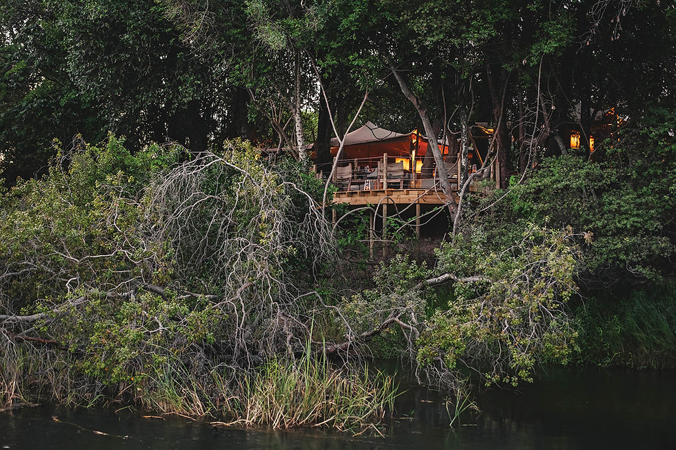 Tsowa Safari Island Tree House.jpg
