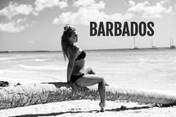 Private-Jet-Sharing-to-Barbados-Flitesta