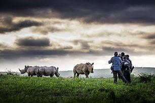 Flitestar Kosi Forest Lodge Rhino Walkin
