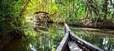 cochin-backwaters.jpg