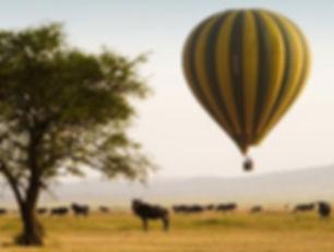 Seregeti Balloon Safari.jpg