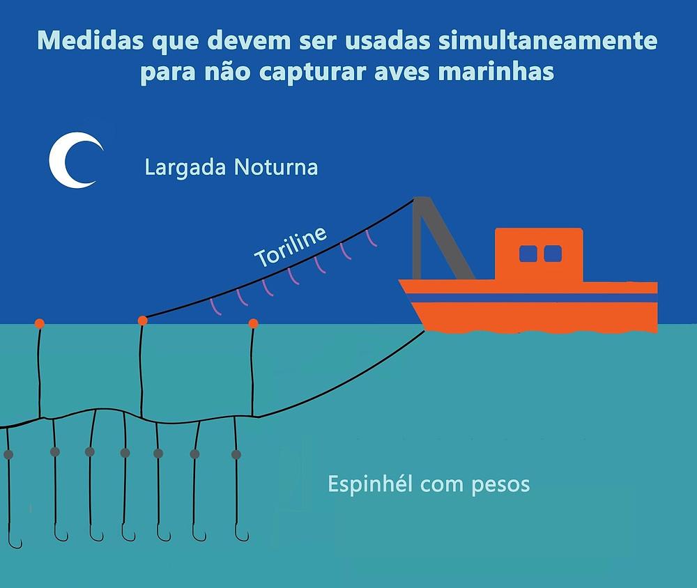 Usar toriline, espinhél com pesos e largada noturna evita capturar aves marinhas.