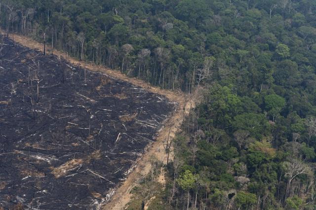 A imagem mostra uma foto aérea da floresta Amazônica e sua devastação. Na imagem é visível ver grande parte da floresta queimada e derrubada.