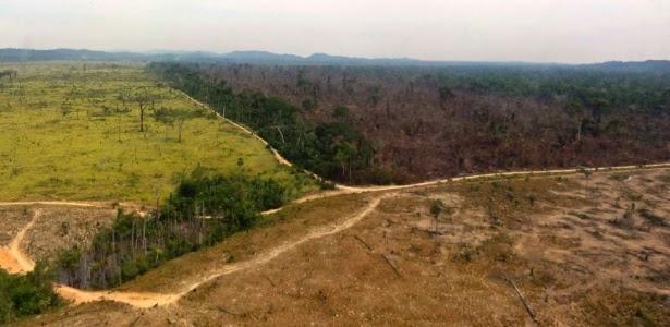 C:\Users\User\Documents\unesp\impacto-ambiental\materia-queimadas\Área da Amazônia desmatada em Novo Progresso no Pará ImagemNelson FeitosaIbamaReuters.jpg