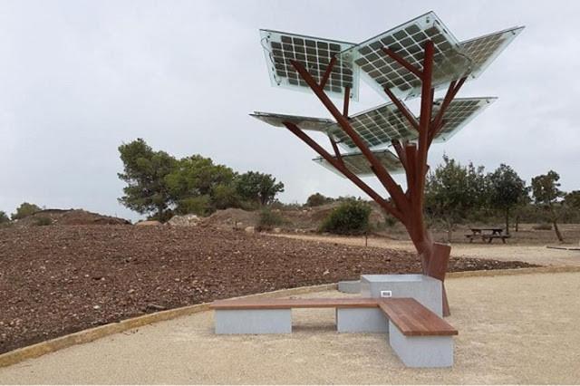 A foto mostra uma árvore sem a copa, nela tem painéis solares. Abaixo, tem um banco de madeira.