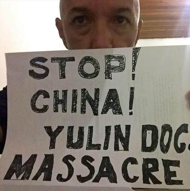 Um homem segura uma placa dizendo: Pare! China! Pare o massacre de cachorros.