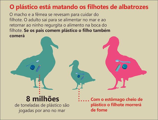 A imagem diz: O plástico está matando os filhotes de albatrozes. O macho e a fêmea se revezam para cuidar do filhote. O adulto sai para se alimentar no mar e ao retornar ao ninho regurgita o alimento na boca do filhote. Se os pais comem plástico, o filho também comerá. 8 milhões de toneladas de plástico são jogadas por ano no mar. Com o estômago cheio de plástico o filhote morrerá de fome.