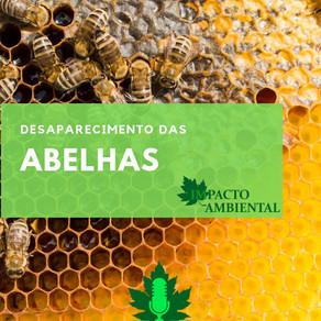 Ambientalidades: Desaparecimento das abelhas