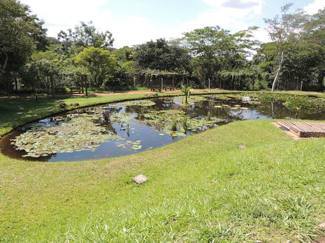 Lago de Vitória-régia do Jardim Botânico de Bauru