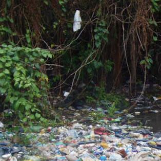 Lixo é o indicador de desigualdade social da Praia Grande/SP