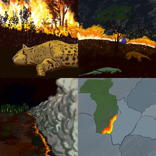 A charge mostra o desenho de uma onça pintada, lagarto, capivara e araras mortas devido a fumaça. O fogo consumindo todo o Pantanal.