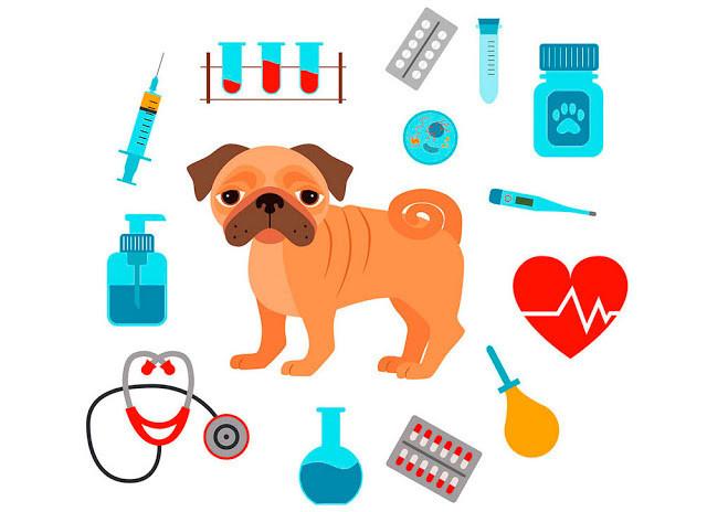 O desenho mostra um cãozinho pug marrom, com o rabo enrolado. Em volta dele tem seringa, tubos de sangue, cartela de comprimido, termômetro, estetoscópio e béquer.