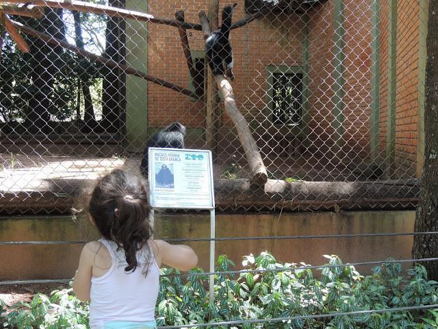 Criança no Zoológico
