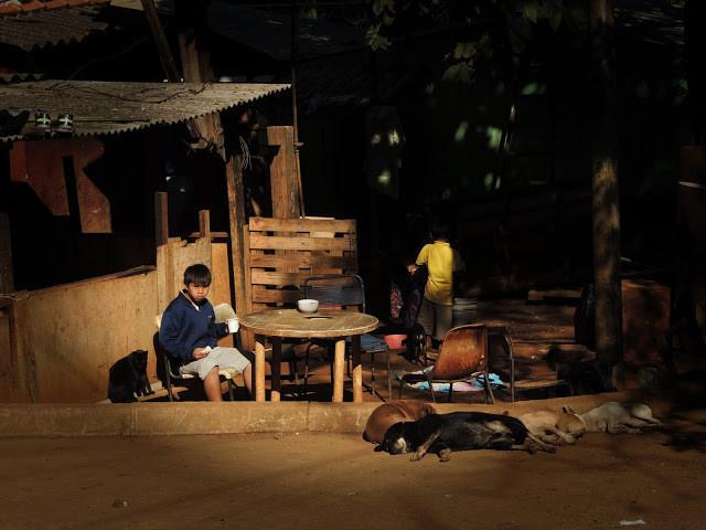Comunidade indígena - aldeia guarani