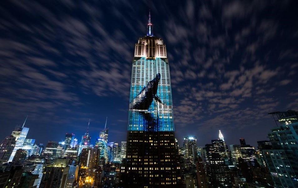 A foto mostra um prédio grande com a imagem de uma baleia. Tem outros prédio menores ao redor. E está noite.
