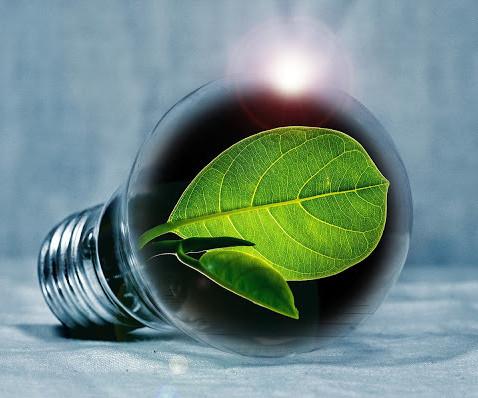 Empreendedorismo sustentável: a responsabilidade de quem produz