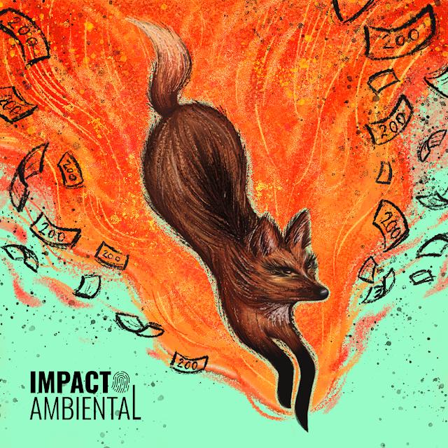 A imagem mostra a ilustração de um lobo-guará. Corpo marrom, tons de preto no dorso do animal, patas pretas, focinho fino, orelhas em pé. Em volta há um fogo laranja e o animal está fugindo. Do fogo sai notas de 200 reais. O logo do Impacto Ambiental está no lado esquerdo.