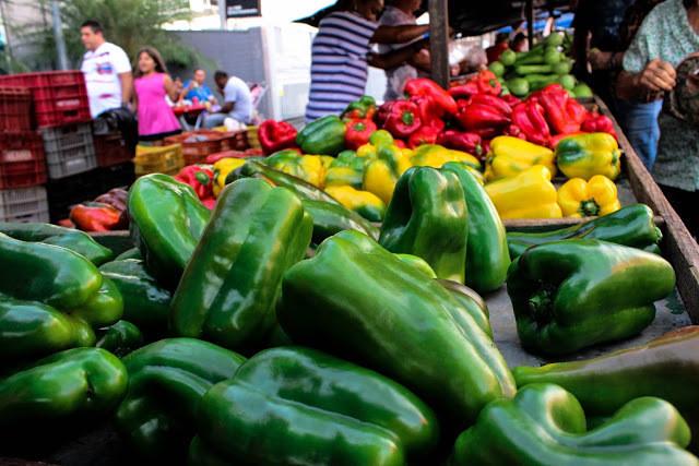 A foto mostra vários pimentões expostos na feira. Tem o verde, amarelo e vermelho.