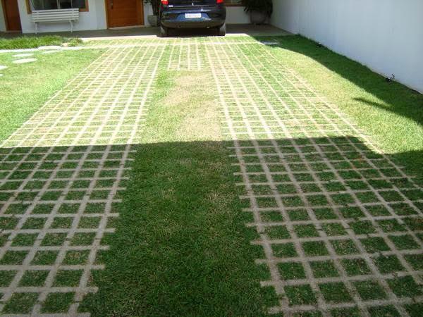 Área verde dentro de casa
