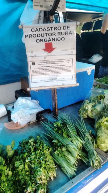 """A foto mostra uma placa escrito """"Cadastro de produtor rural orgânico"""". E abaixo na mesa se vê pés de cheiro verde e salsinha."""