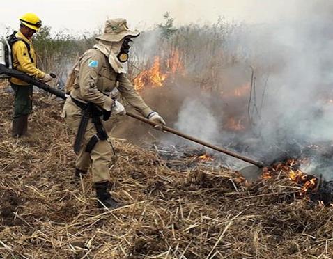 Natureza é ameaçada no Pantanal