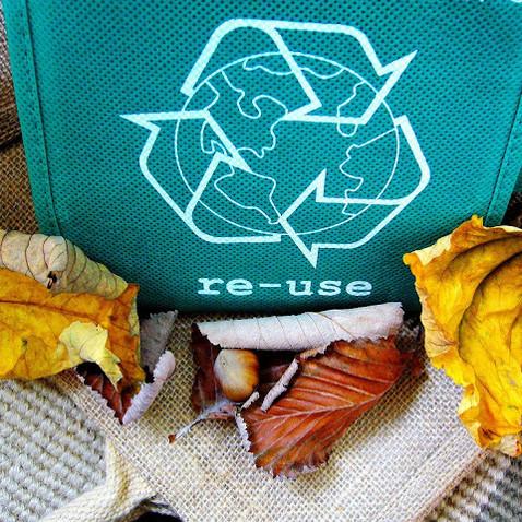 Lixo x desperdício: você pode reutilizar seu lixo