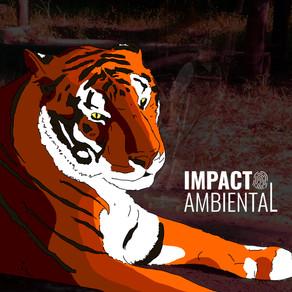 Tigre-de-bengala morre no Zoológico de Bauru